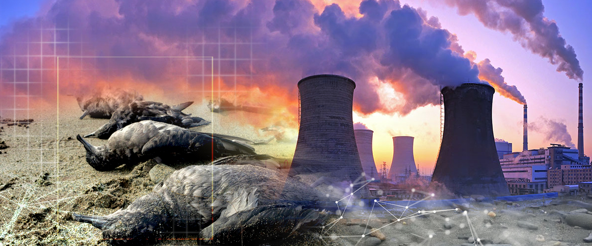 AI solution for animal death caused by polluted refinery