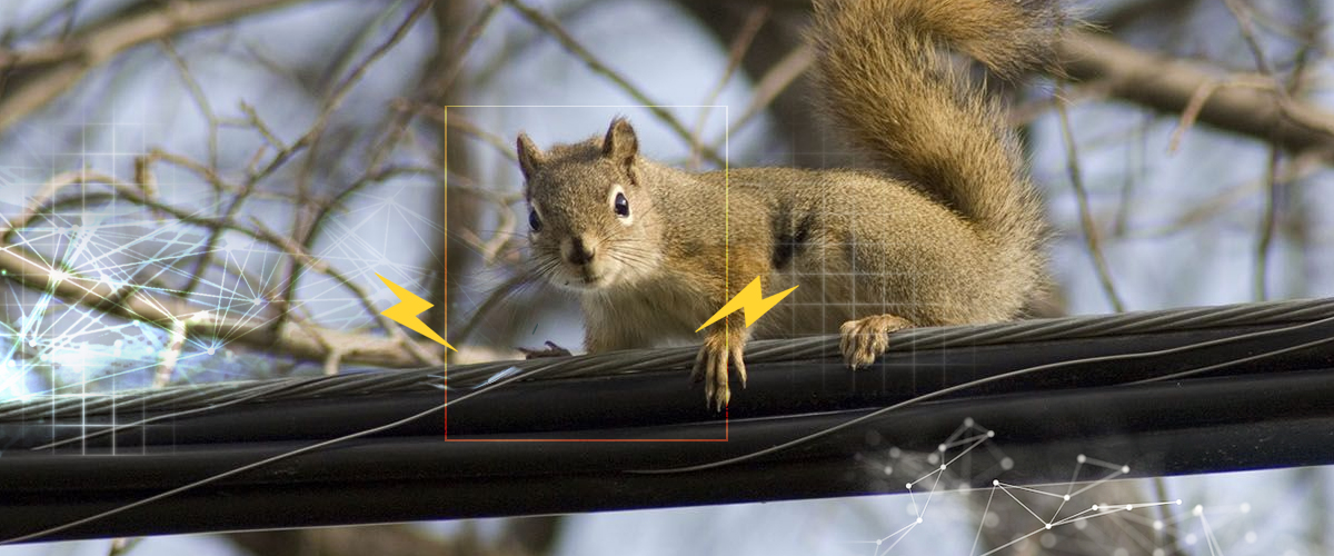 AI solution for outages caused by animals